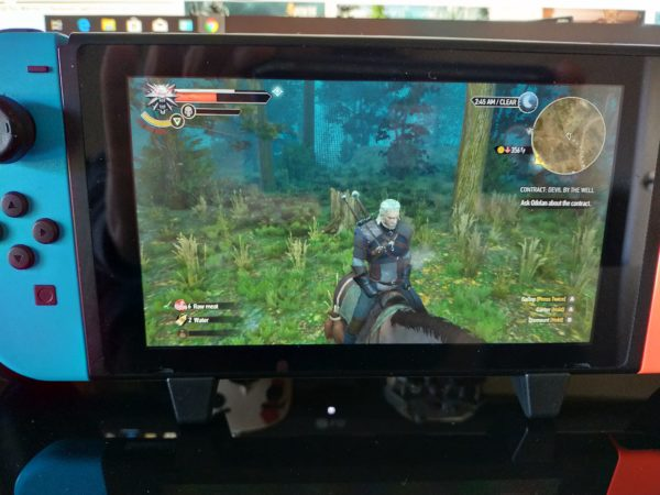 The Witcher and Roach on the move